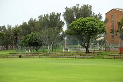 School Grounds 04