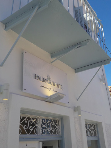 Palm & White