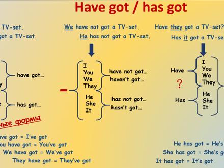 Обороты Have / Has и Have got / Has got в английском
