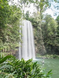 Millaa Millaa Falls.P5021282