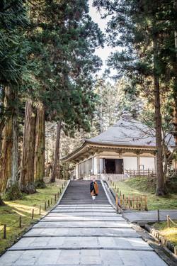 11. Chusonji Castle - IMG_8233