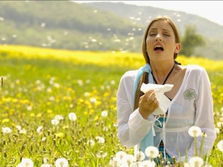 Seasonal Alergies