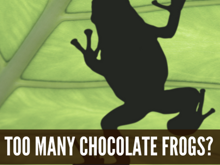 Too Many Chocolate Frogs – Part 2