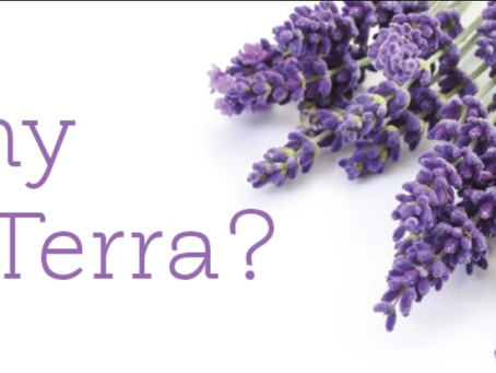 Why doTERRA? Plus an INCREDIBLE OFFER THIS MONTH (Limited Time Only)