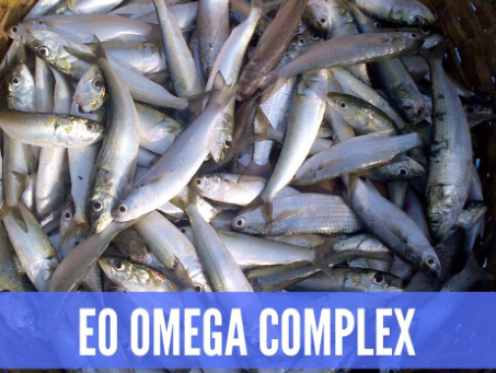 THE ESSENTIAL OIL OMEGA COMPLEX.