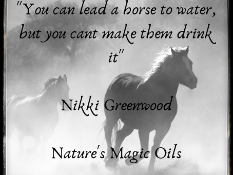 """""""You can lead a horse to water, but you cant make them drink it."""""""