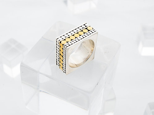 Double Life Square Ring