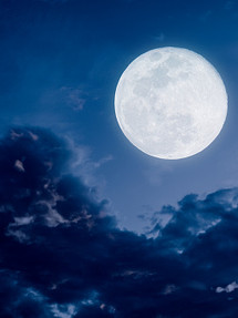 In the Stars January 24-31, 2021...shining light on the astrology of the week:  Full Moon