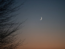 In the Stars January 10-17, 2021...shining light on the astrology of the week:  New Moon