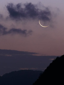 In the Stars May 17-24, 2020...shining light on the astrology of the week:  New Moon