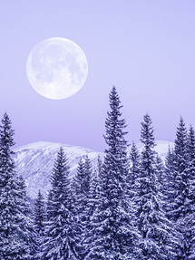In the Stars February 21-28, 2021...shining light on the astrology of the week:  Full Moon