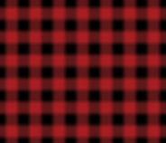 RED FLANNEL.jpg