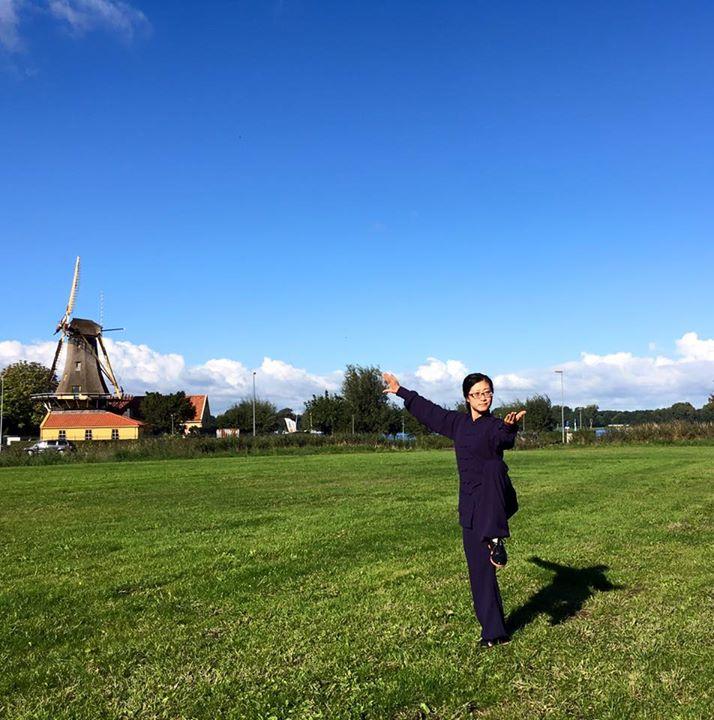 Holland - Taichi