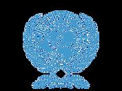 UN transp  blue reflex.png