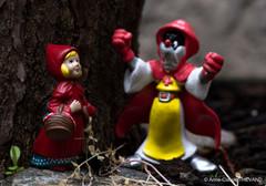 Le Petit Chaperon Rouge sort du bois