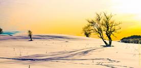 Symphonie hivernale
