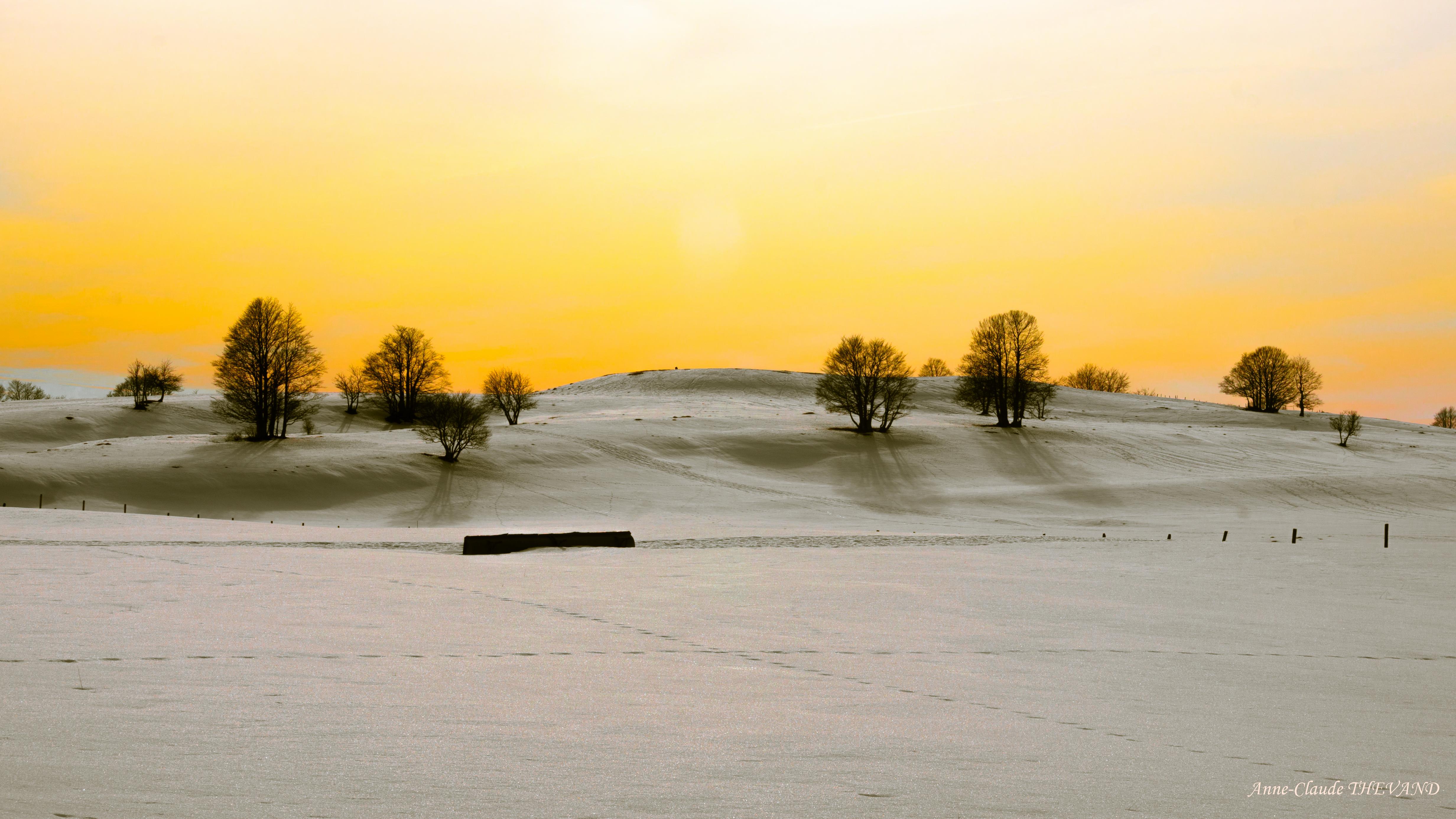 Variation hivernale