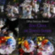 KakaoTalk_20200106_093716487.jpg