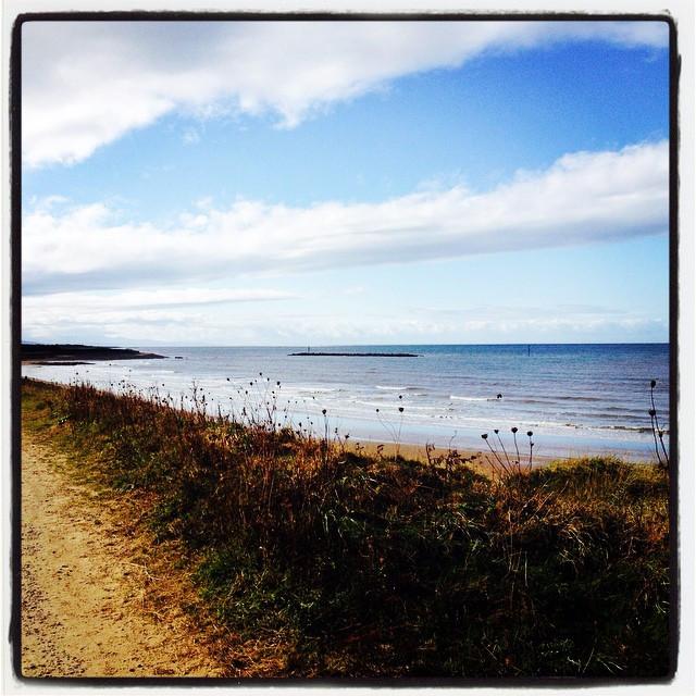 coastal walk picture.jpg
