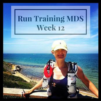Run Training MDS - Week 12