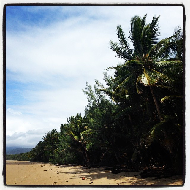 Instagram - Another gorgeous walk down the 4 mile beach in #portdouglas #Austral