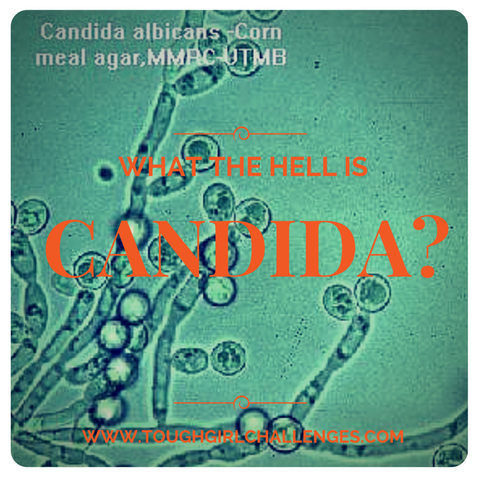 What the hell is candida?