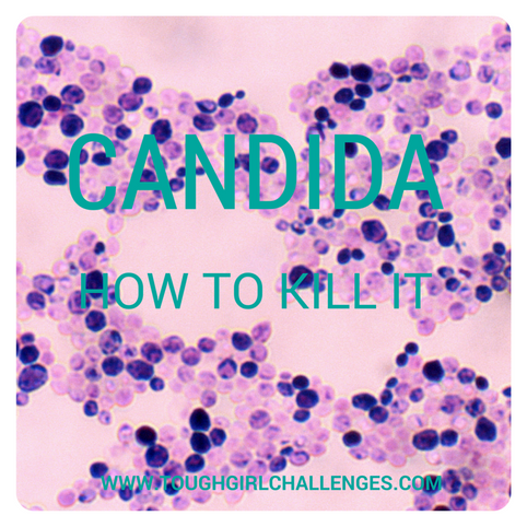 How can you kill candida?