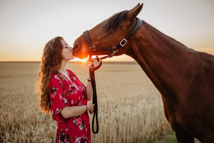 Photographe Equestre 87.jpg