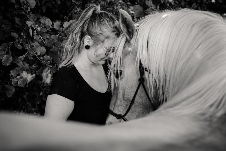 Photographe Equestre 75.jpg