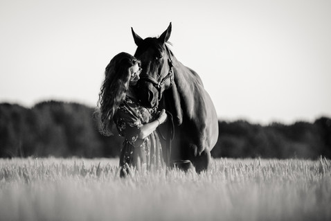 Photographe Equestre 83.jpg