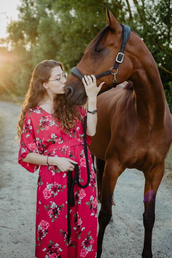 Photographe Equestre 78.jpg