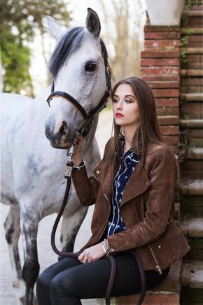 Photographe chevaux -57.jpg