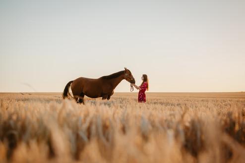 Photographe Equestre 81.jpg