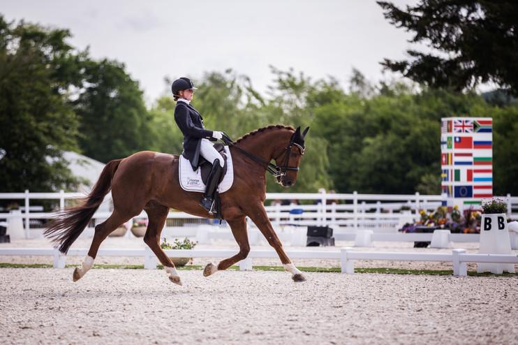 Photographe chevaux -54.jpg