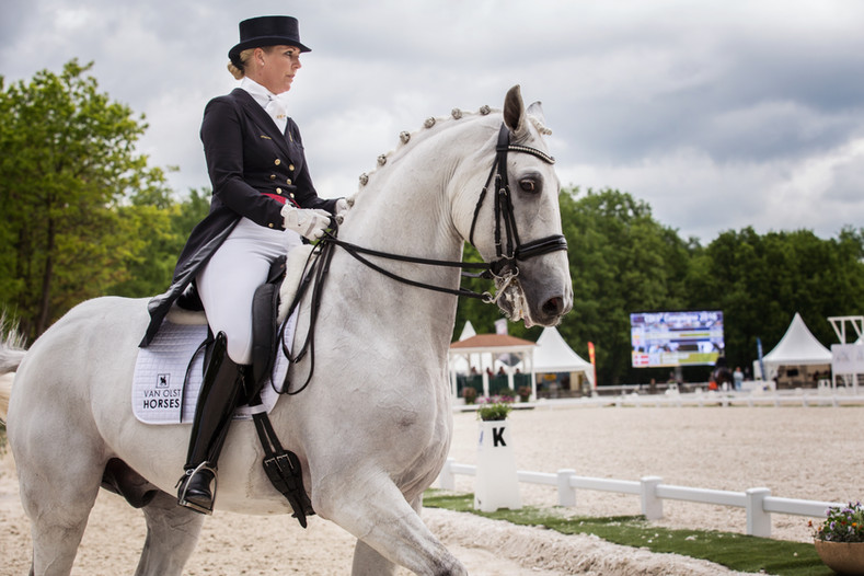 Photographe chevaux -51.jpg