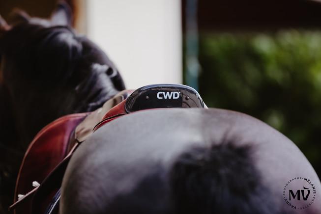 CWD Photographe equestre.jpg