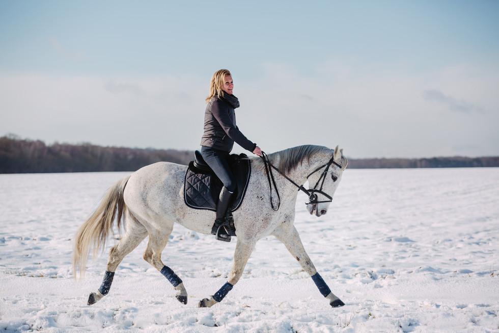 Photographe Equestre 49.jpg