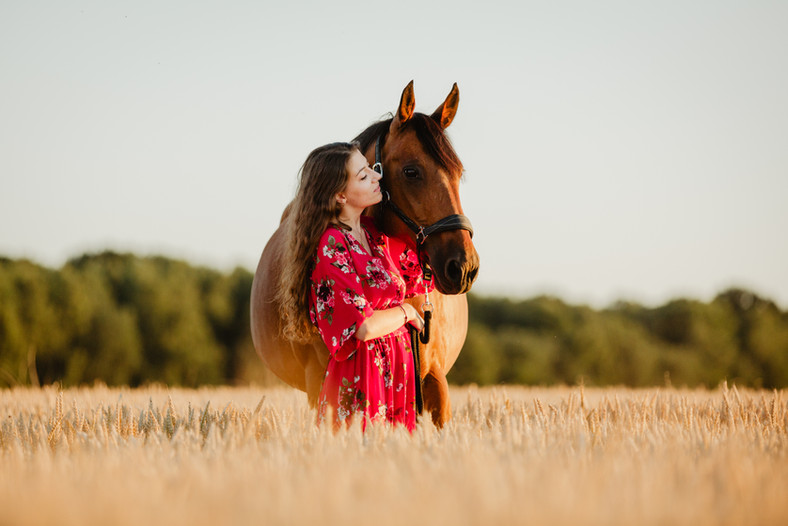 Photographe Equestre 84.jpg
