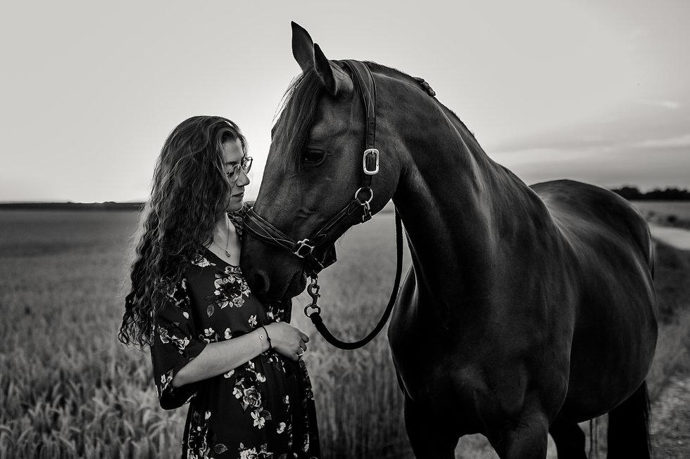 Photographe Equestre 88.jpg