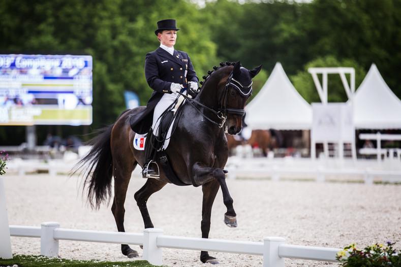 Photographe chevaux -53.jpg
