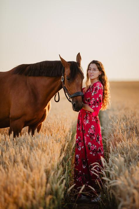 Photographe Equestre 82.jpg