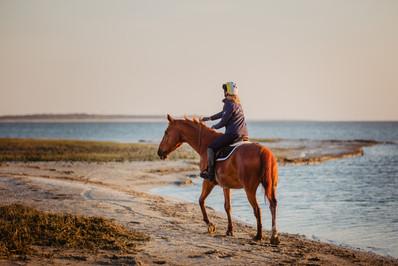 Photographe Equestre 25.jpg