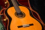 Michele Della Giustina Guitar