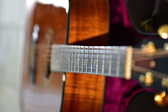 Taylor Guitar Koa Wood