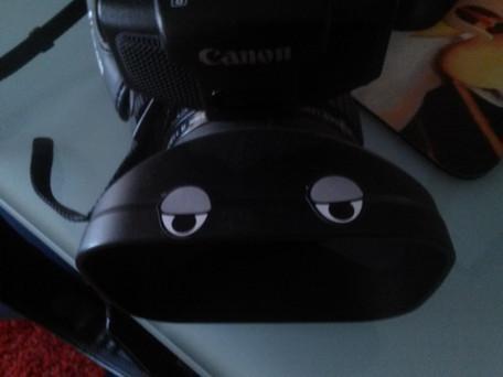 Kermit the Camera