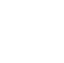 plante1.png