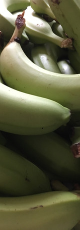 Green Bananas, yellow plantains and brea