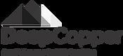 Logos BN-03.png