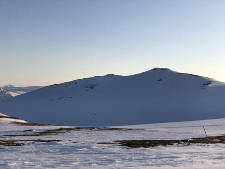 Velkommen til Oppdal - nysnø og pudder