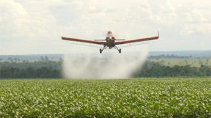 What is known about the glyphosate herbicide?